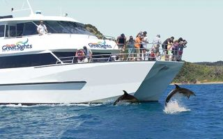 Dolphin Seeker Cruise to the Hole in the Rock, Bay of Islands