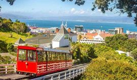 Our favourite things to do in Wellington