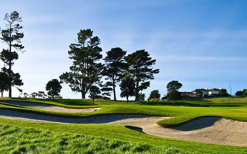 Gulf Harbour Golf Course, Auckland