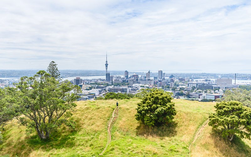 Climbing to the top of Mt Eden