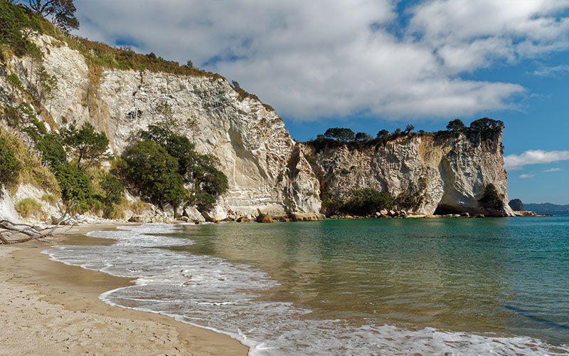 A beach on the Coromandel coastal walk