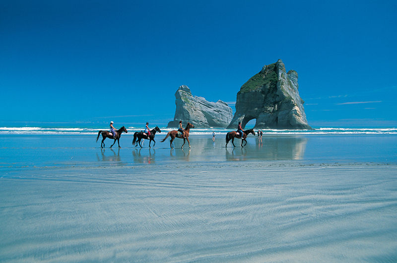 Horse riding at Wharariki Beach, Golden Bay