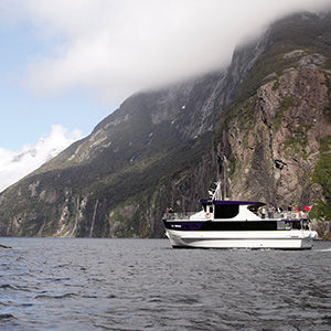 Cruise Milford Sound with AAT Kings