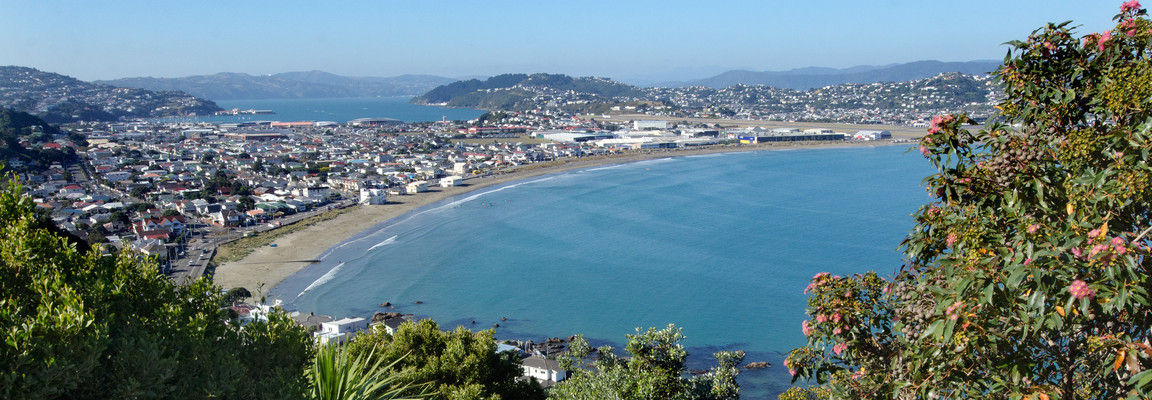 View over Lyall Bay, Wellington