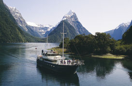 Explore Fiordland on the Milford Wanderer