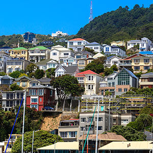 Explore our quirky capital, Wellington city