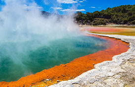 A geothermal pool in Rotorua with steam coming off it