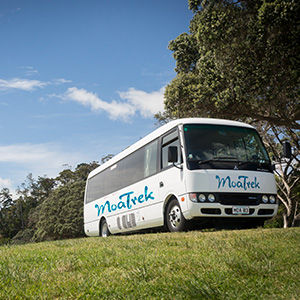 MoaTrek coach tours
