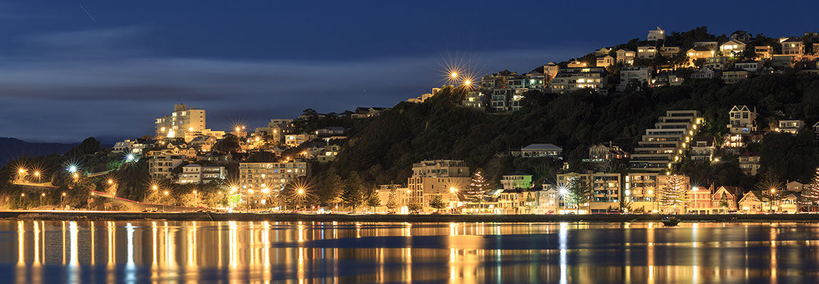 The bright lights of Wellington City