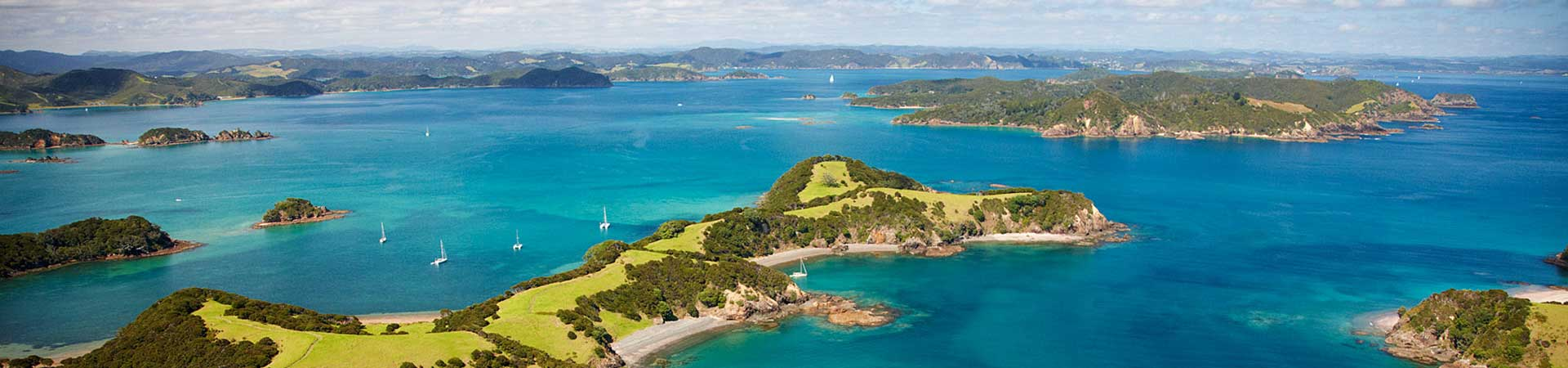 Coach Tours Bay Of Islands