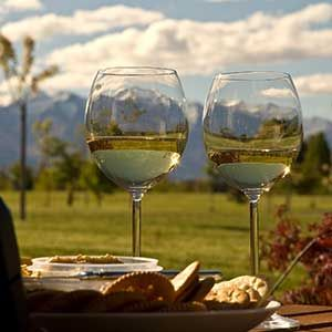Wanaka Wineries, New Zealand