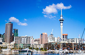 The Auckland City Skyline in the day