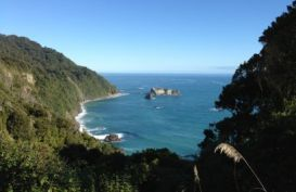 The view on the Haast  to Fox glacier road