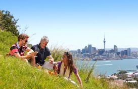 Picnic at Devonport looking across to Auckland City