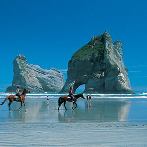 Horse back riders on the beach Northland