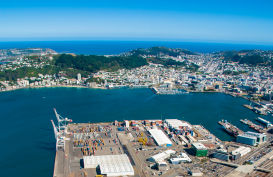 Wellington City and its harbour